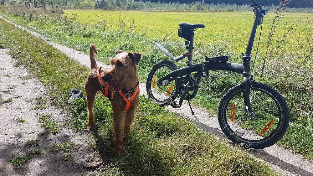 Ich und das Fahrrad – Teil 1