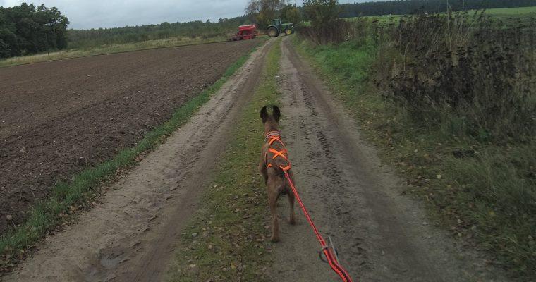Mein NiiloMobil – Trainingsfahrt im Oktober